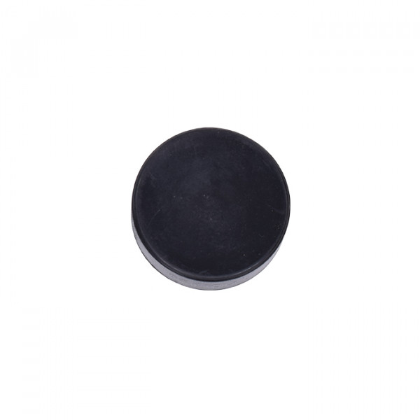 Eishockeypuck Classic size