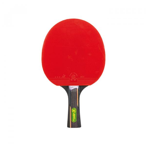 Tischtennisschläger SPORTASTIC EAGLE - GRADE 700