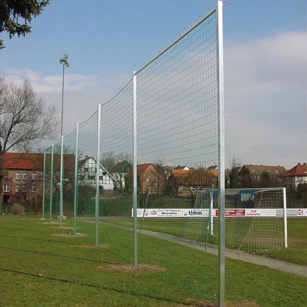 Ballfangnetz