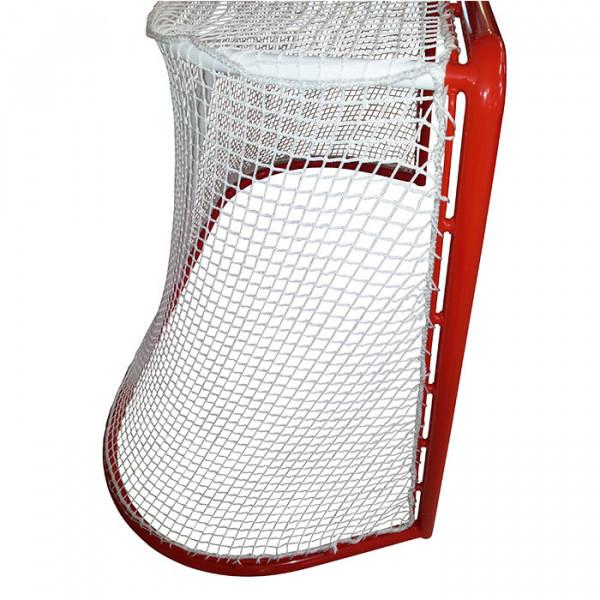 Eishockey Tornetz Fangnetz